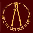 Until The Last Cage męska